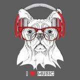 Hund i exponeringsglas och hörlurar också vektor för coreldrawillustration Royaltyfri Bild
