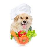 Hund i kocks hatt som ligger med en bunke av grönsaker isolerat arkivbilder
