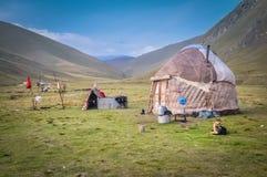 Hund i Kyrgystan Fotografering för Bildbyråer