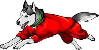 Hund i overaller Royaltyfri Illustrationer
