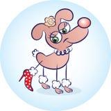 Hund i rött Royaltyfria Foton