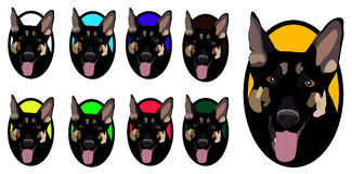 Hund im Ring Lizenzfreie Stockfotos