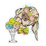 Hund isst Eiscreme Netter Welpe mit Nachtisch vektor abbildung