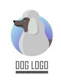 Hund Logo Vector av den isolerade vita standarda pudeln arkivfoton
