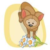 Hund med blommor Arkivbilder