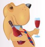 Hund med drinken Royaltyfri Foto