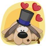 Hund med hjärtor Royaltyfria Bilder