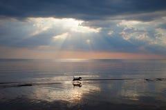 Hund in Meer. Lizenzfreies Stockbild