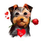 Hund mit Blume im Mund und Herz für Sie Nettes Haustier wünscht Ihnen glücklichen Valentinsgrußtag Modernes Überwachungsgerät auf Stockbild