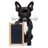 Hund mit dem Knochen stockbilder
