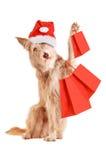 Hund mit dem Weihnachtshut und -Einkaufstaschen lokalisiert Stockfoto