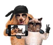 Hund mit der Katze, die ein selfie zusammen mit einem Smartphone nimmt Lizenzfreie Stockfotografie