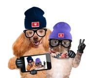 Hund mit der Katze, die ein selfie zusammen mit einem Smartphone nimmt Stockfotografie