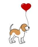 Hund mit einem Ballon Stockfoto