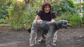 Hund mit glücklichem Eigentümer stock video