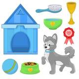 Hund mit unterschiedlichen Spielwaren und Zubehör Lizenzfreie Stockbilder