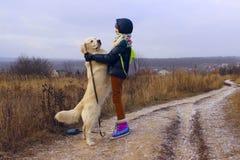 Hund och ägare som är utomhus- Spela för golden retriever som är utomhus- royaltyfri bild