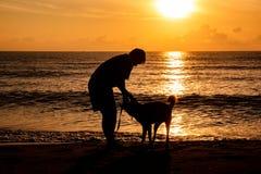 Hund och ägare som tillsammans går och spelar på havsstranden med härlig solljusbakgrund i morgonferien arkivfoton