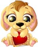 Hund och hjärta Arkivbilder