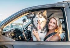 Hund och kvinna i en bil royaltyfri bild