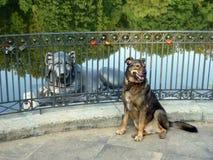 Hund- och lejonskulptur på pir royaltyfri fotografi