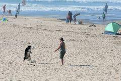 Hund- och manlekbollen på havet sätter på land Royaltyfri Foto