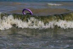 Hund på Blacket Sea med pulleren jätte- schnauzer royaltyfri fotografi