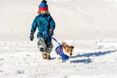 Hund på den rinnande midjakoppeln som spelar med barnet på snö royaltyfria bilder