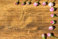 Hund Rose In das Sonnenlicht-auf dem Tisch Rosa Rosa Canina Flowers Valentine Theme Stockbilder