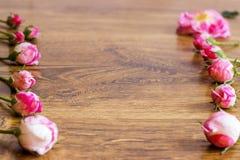 Hund Rose Pink Rosa Canina Flowers Arkivbilder