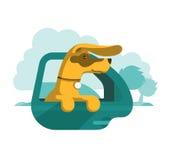Hund schaut aus Autofenster heraus Stockbild