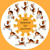 Hund som gör yogaposition av Surya Namaskara Royaltyfri Foto