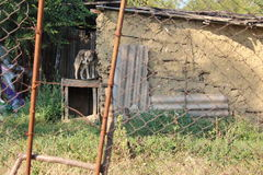 Hund som kedjas fast bredvid en gammal ladugård arkivfoto
