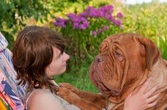 hund som picnicing arkivfoto