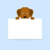 Hund som rymmer ett baner Arkivbild