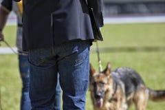 Hund- strid Royaltyfri Bild