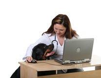 Hund am Tierarzt Lizenzfreie Stockfotografie