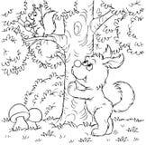 Hund und Eichhörnchen Lizenzfreies Stockfoto