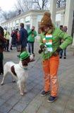 Hund und Eigentümer an der St- Patrick` s Tagesfeier in Moskau Stockfotografie