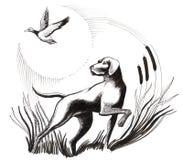 Hund und Ente Lizenzfreie Stockfotos