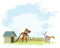 Hund und Hasen Stockbilder