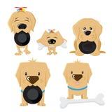 Hund und Hunde, Charakter gebrauchsfertig als Karikatur mascote oder Haustier Lizenzfreie Stockfotos