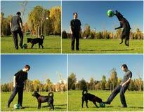 Hund und Junge, die Fußball spielen Stockbild