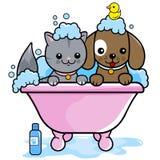 Hund und Katze, die ein Bad nehmen Stockbild