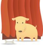 Hund und Knochen mit rotem Hintergrund Stockfotos