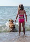 Hund und Mädchen, die Reichweite spielen Stockfotos