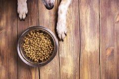 Hund und Schüssel von trockenem schroten Lebensmittel Lizenzfreies Stockbild