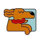 Hund vom Autofenster Haustier, zum in Auto zu reiten Das Reisen ist ein Tier stock abbildung