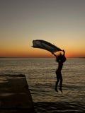 Hunda en la puesta del sol del mar Foto de archivo libre de regalías