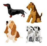 hundar vektor illustrationer